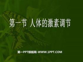 《人体的激素调节》PPT课件