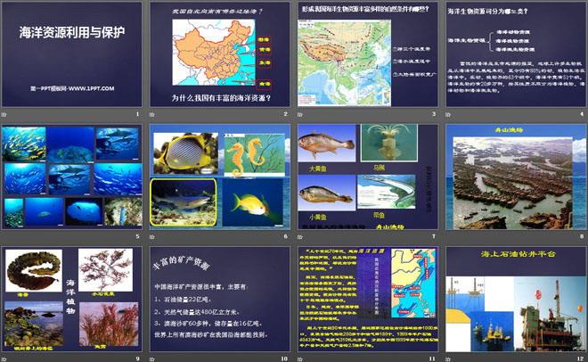 《海洋利用与保护》PPT下载