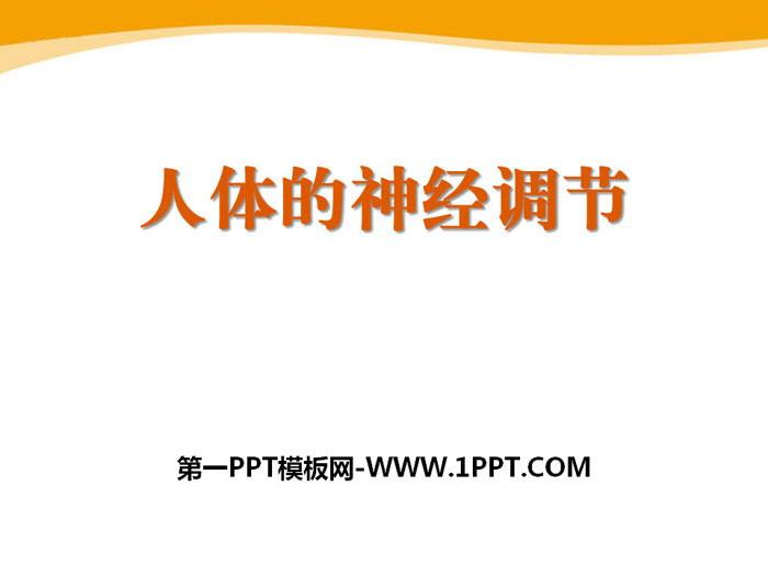 《人体的神经调节》PPT课件