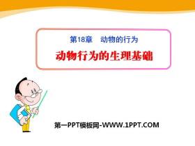 《动物行为的生理基础》PPT课件