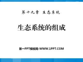 《生态系统的组成》PPT