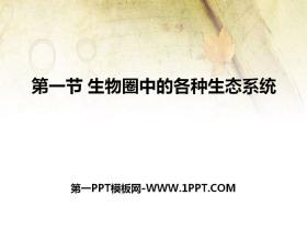 《生物圈中的各种生态系统》PPT