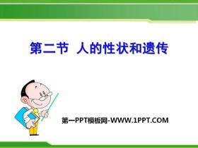 《人的性状和遗传》PPT