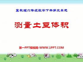 《测量土豆体积》PPT课件