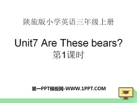 《Are These Bears?》PPT