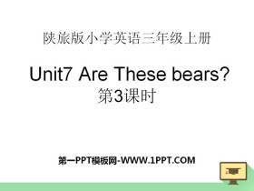 《Are These Bears?》PPT下�d