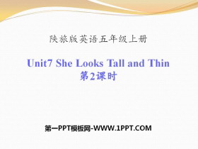 《She Looks Tall and Thin》PPT课件