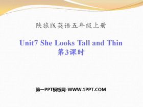 《She Looks Tall and Thin》PPT下载