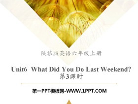 《What Did You Do Last Weekend?》PPT课件tt娱乐官网平台