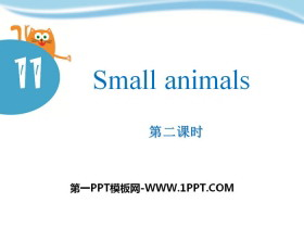《Small animals》PPT�n件