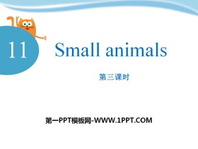 《Small animals》PPT下载