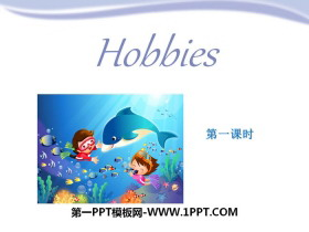 《Hobbies》PPT