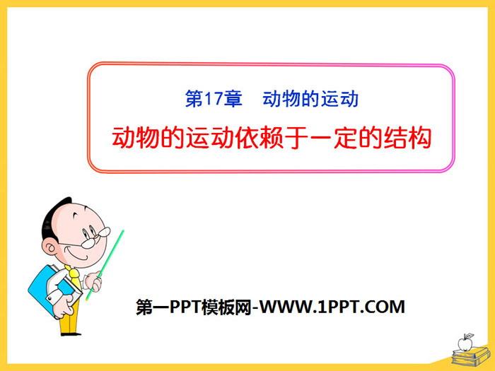 《动物的运动依赖一定的结构》PPT