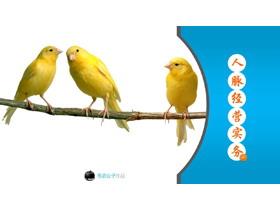 人脉经营PPT培训课件免费tt娱乐官网平台