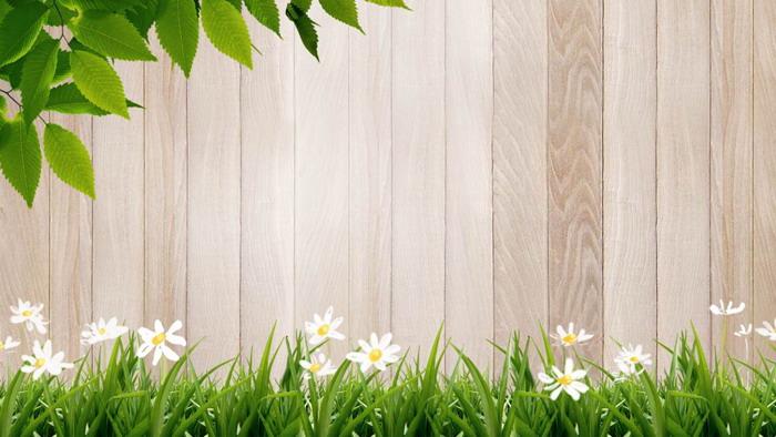 五张绿叶花草木纹PowerPoint背景图片