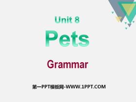 《Pets》GrammarPPT