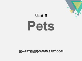 《Pets》PPT