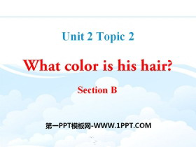 《What color is his hair?》SectionB PPT