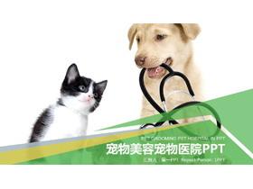 小狗小猫背景的宠物PPT模板