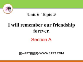 《I will remember our friendship forever》SectionA PPT