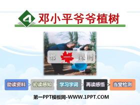 《邓小平爷爷植树》PPT课件(第一课时)