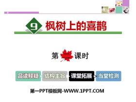 《枫树上的喜鹊》PPT课件(第二课时)