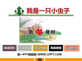 《我是一只小虫子》PPT课件(第一课时)
