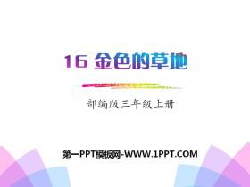 《金色的草地》PPTtt娱乐官网平台