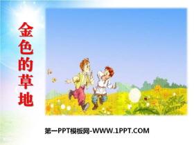 《金色的草地》PPT课件tt娱乐官网平台