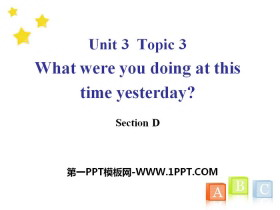 《What were you doing at this time yesterday?》SectionD PPT