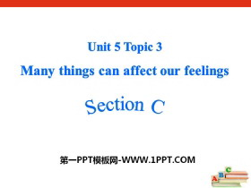 《Many things can affect our feelings》SectionC PPT