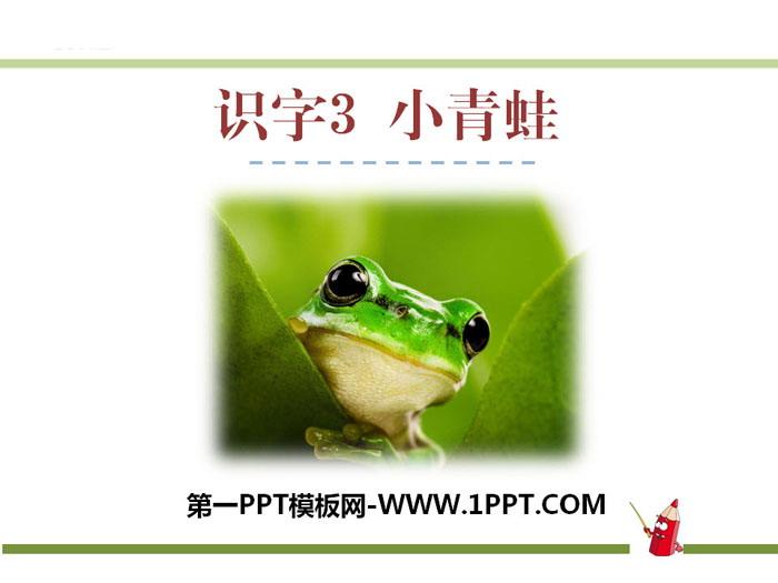 识字 小青蛙 PPT课件