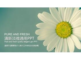 淡雅清新小花背景PPT模板