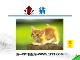 《猫》PPT下载