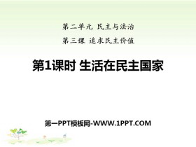 《平安彩票注册登录入口在民主国家》追求民主价值PPT课件下载