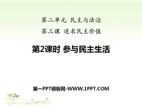 《参与民主平安彩票注册登录入口》追求民主价值PPT下载