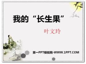 """《我的""""长生果""""》PPT"""