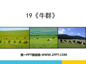 《牛群》PPT