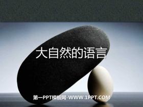 《大自然的语言》PPT下载