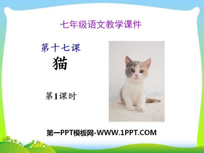 部编版七年级语文上册《猫》PPT(第一课时)