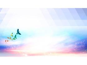 梦幻鸽子PPT背景图片