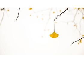 黄色银杏叶PPT背景图片