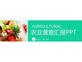 �G色蔬菜�r�a品PPT模板免�M下�d