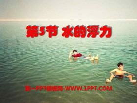 《水的浮力》PPT