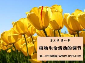《植物生命活动的调节》PPT课件