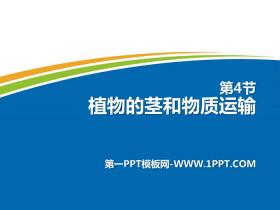 《植物的茎与物质运输》PPT