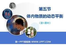 《体内物质的动态平衡》PPT(第一课时)