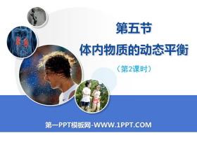 《体内物质的动态平衡》PPT(第二课时)