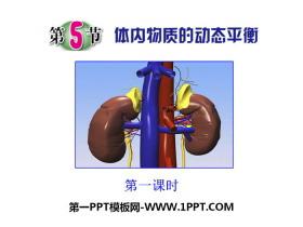 《体内物质的动态平衡》PPT下载
