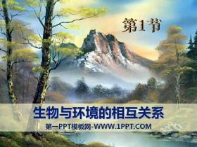 《生物与环境的关系》PPTtt娱乐官网平台